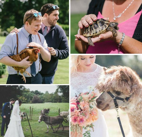 Μυστικά για τους γάμους